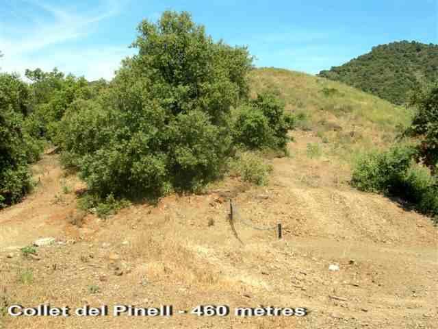 Collet del Pinell - ES-T- 460 mètres