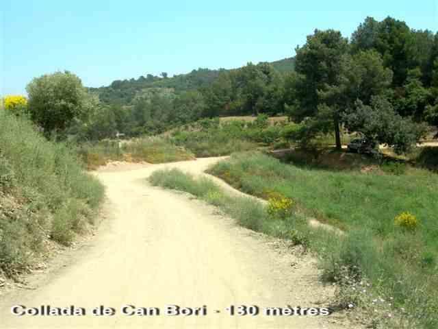 Coll de Can Bori - ES-B-0130