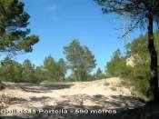 Coll de la Portella - ES-B-0590f