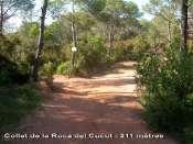 Collet de la Roca del Cucut - ES-B-0211