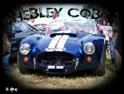 Shelby Cobra Mini_090618064258491573898680