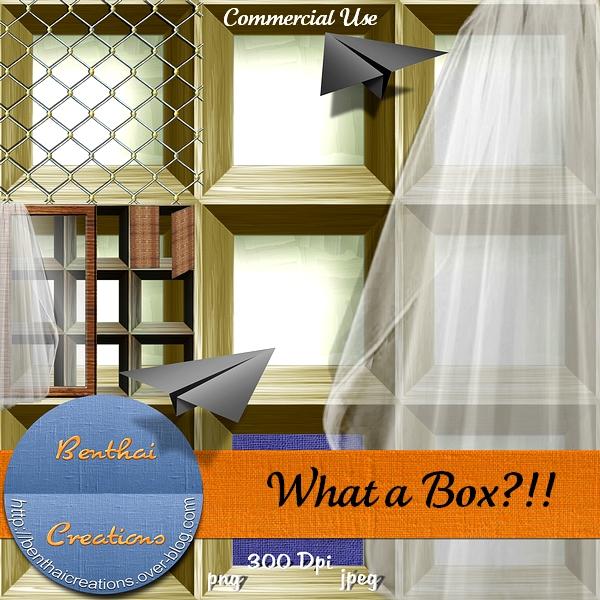 What A Box??!! 090619083557184673901495