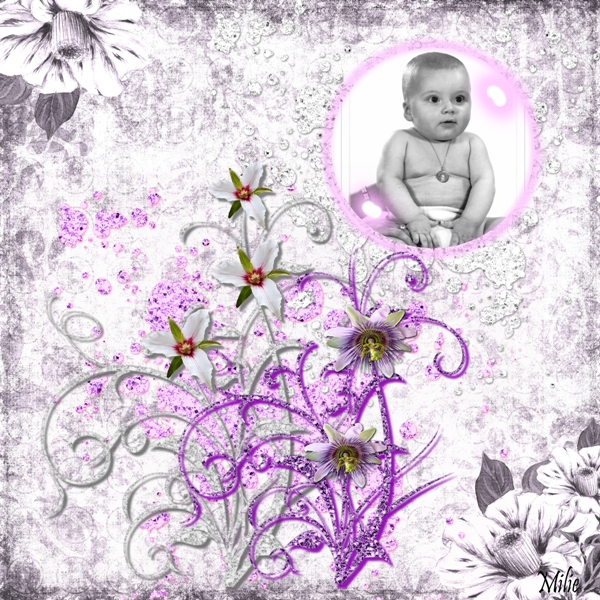 Challenge 24 kit imposé _purple dreaming w